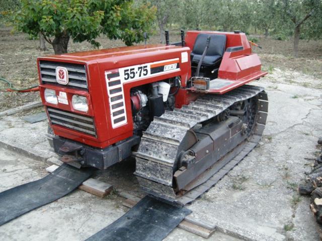 Fiatagri 55.75 frutteto - 1