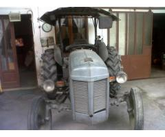 Massey Ferguson TE 20