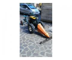 Motocoltivatore Goldoni - Immagine 2